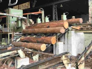legno-recupero-torino-metropoli-legno-segheria-rivista-promuovere